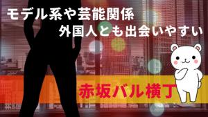 モデル系や芸能関係・外国人とも出会いやすい『赤坂バル横丁』