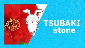 TSUBAKI stone