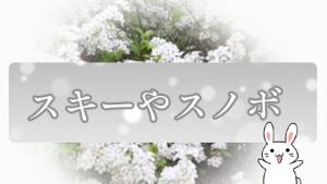 スキーやスノボ